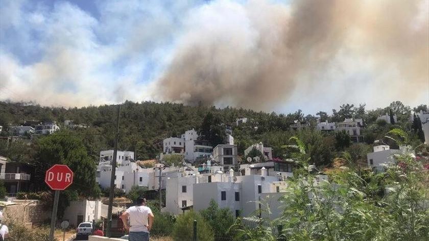 Bodrum'da yeniden yangın! Alevler yükselmeye başladı!
