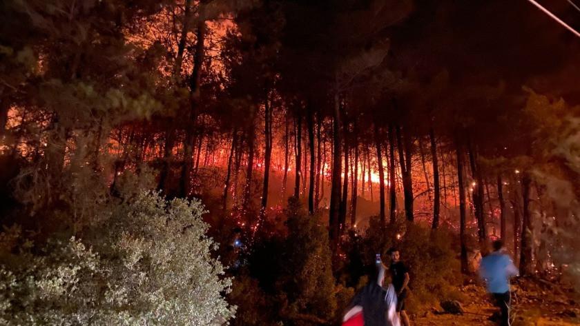 Muğla'nın Fethiye ilçesi Ölüdeniz'de orman yangını! video