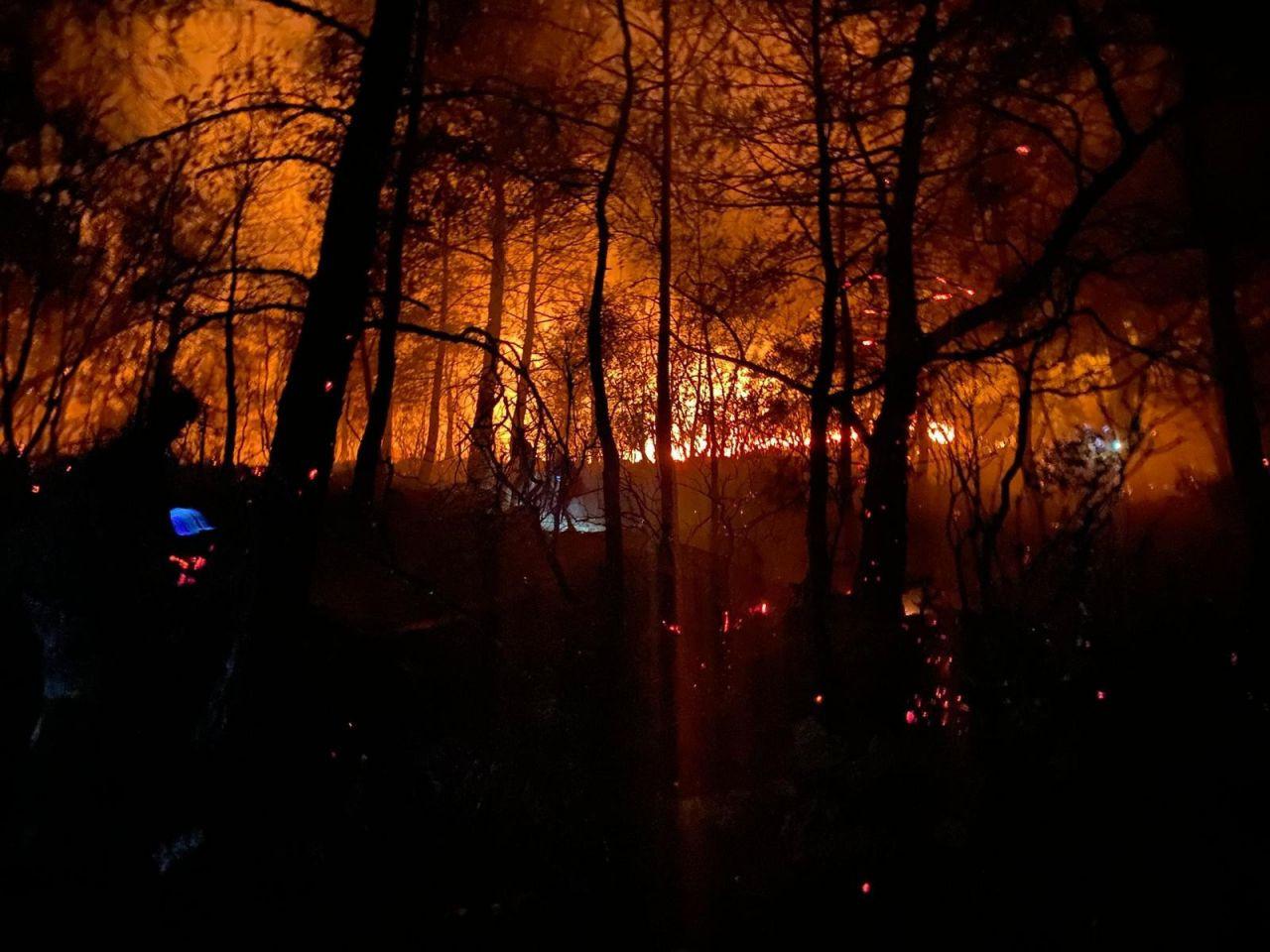 Muğla'nın Fethiye ilçesi Ölüdeniz'de orman yangını! Ekipler ve vatandaşlar seferber oldu! video - Sayfa 3