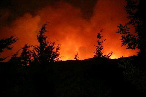 Hangi yangınlar söndürüldü, hangi yangınlar devam ediyor? İşte orman yangılarında son durum - Sayfa 2