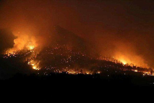 Hangi yangınlar söndürüldü, hangi yangınlar devam ediyor? İşte orman yangılarında son durum - Sayfa 4