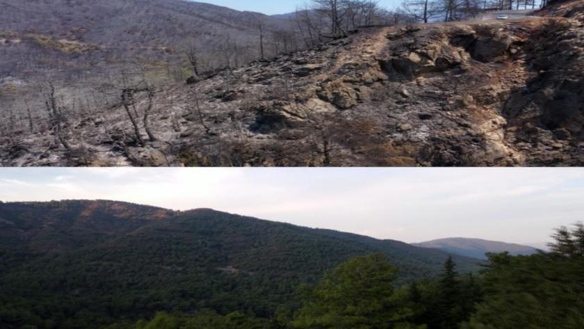Marmaris'in yangın öncesi ve sonrası görüntüler