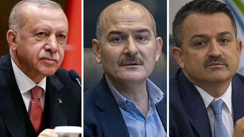 HKP'den Erdoğan, Soylu ve Pakdemirli hakkında suç duyurusu
