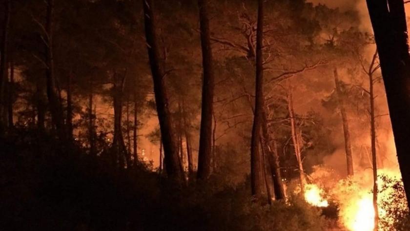 Muğla'da 3 ayrı noktada yangın!