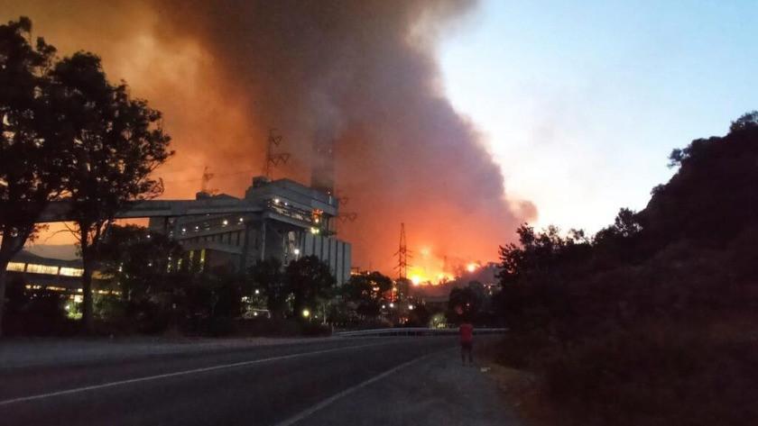 Termik santral ve orman yangınlarında son durum!
