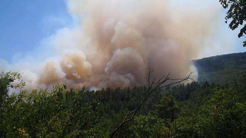 Burdur'un Bucak ilçesinde orman yangını!