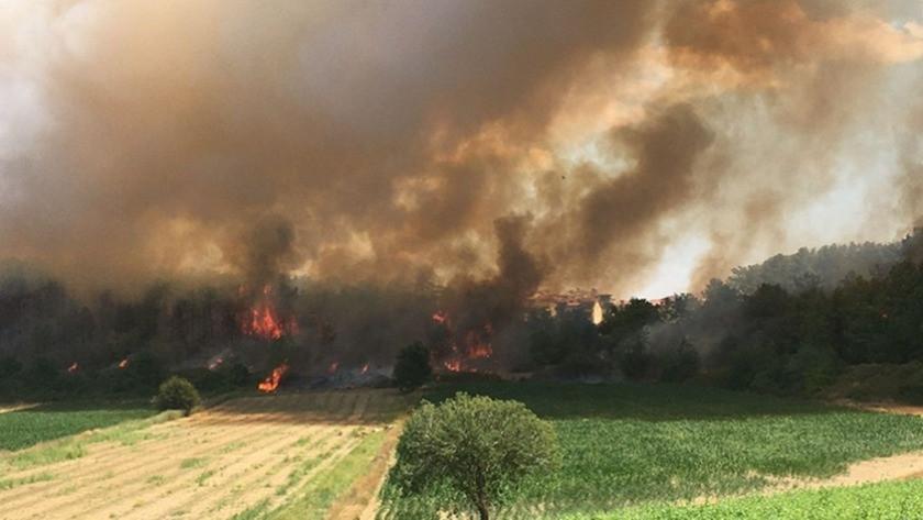 Manavgat'ta yine yangın!  Ekipler havadan ve karadan müdahale ediyor