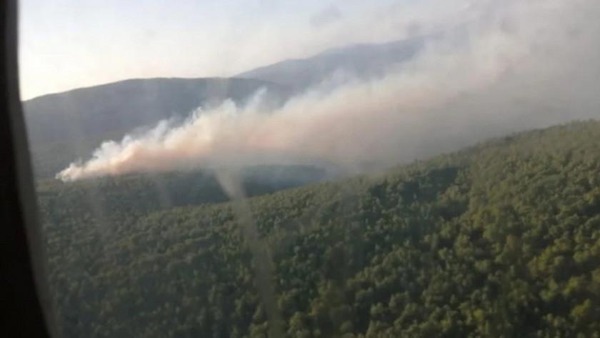 İzmir'in Karaburun ilçesinde orman yangını !