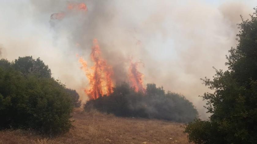 Manisa Kula'da büyük orman yangını!
