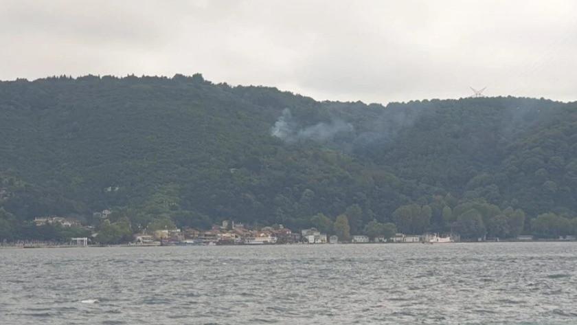 Bir orman yangını da Beykoz'da