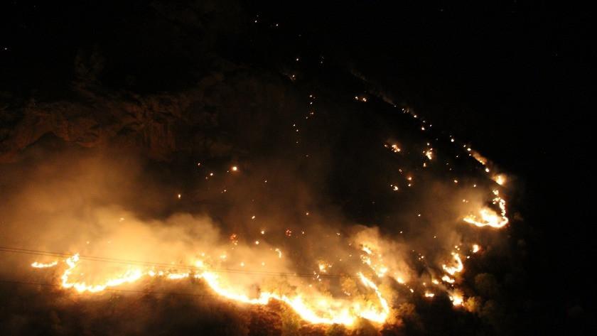 Şemdinli'de korkutan orman yangını