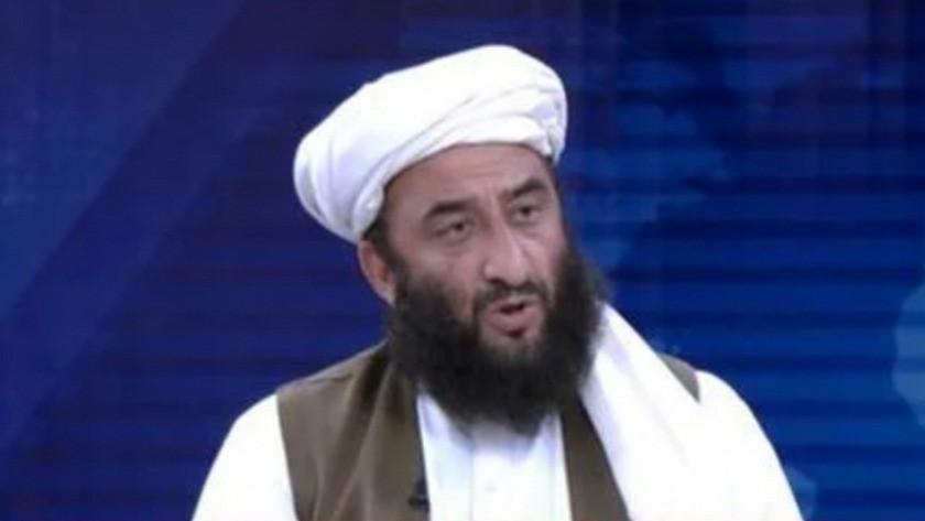 Taliban sözcüsü: Kadından bakan olamaz, onların işi doğurmak