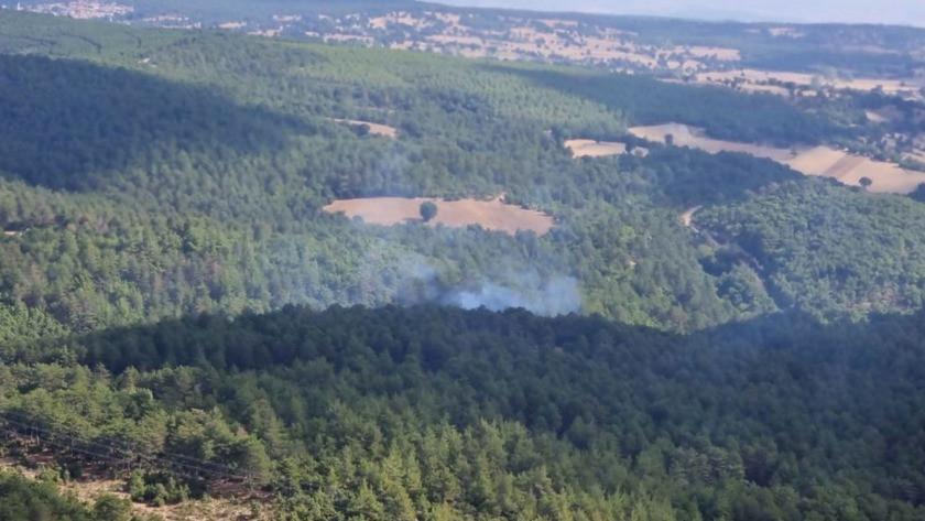 Balıkesir'de orman yangını! Havadan ve karadan müdahale ediliyor!