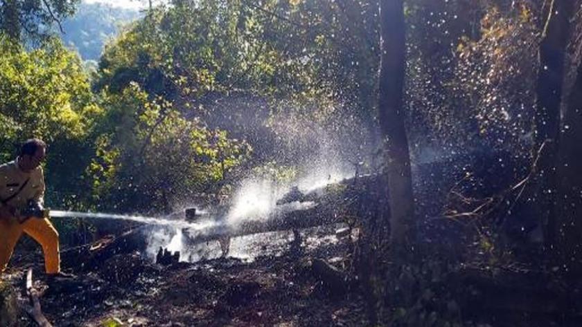 Muğla'da yıldırım düşmesi sonucu 37 yangın!