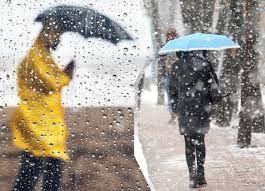 Bu illerde yaşayanlar dikkat! Meteoroloji'den kuvvetli yağış ve fırtına uyarısı I 14 Ekim 2021 - Sayfa 1