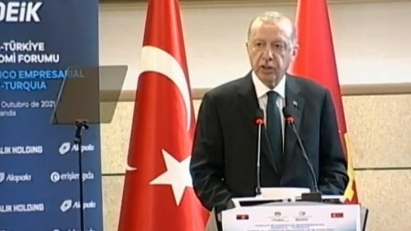 Erdoğan, Türkiye-Angola İş Forumu'nda konuştu
