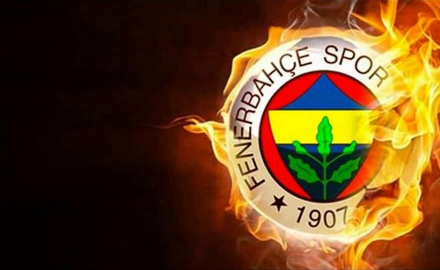 İşte Fenerbahçe'ye veda eden futbolcular - Sayfa 2